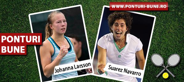 Johanna Larsson vs Carla Suarez Navarro – WTA Paris – Analiza si pronostic