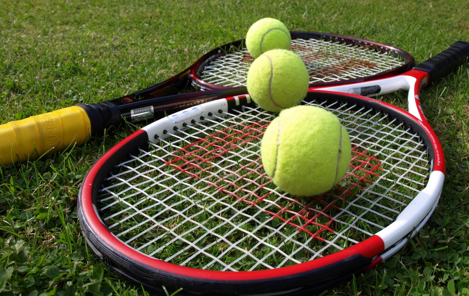 Pronosticuri din tenis 24-02-2014