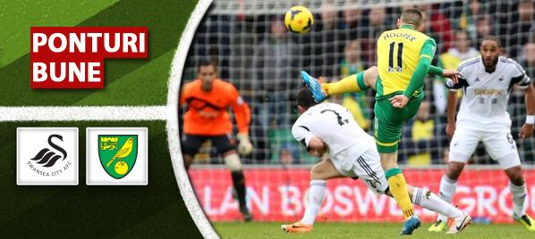 Swansea vs Norwich – Premier League – Analiza si pronostic