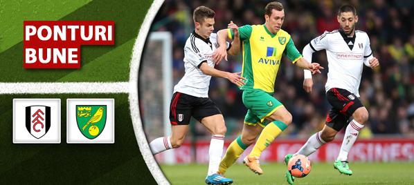 Fulham vs Norwich – Premier League – Analiza si pronostic