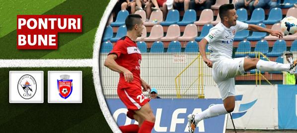 Gaz Metan Medias vs FC Botosani – Liga 1 – analiza si pronostic