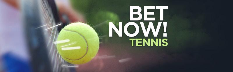 Ponturi Tenis / Unde avem cele mai mari cote pe Cupa Davis