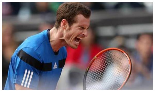 Ponturi Tenis / Cote , evolutii si distribuire pariuri la Davis Cup