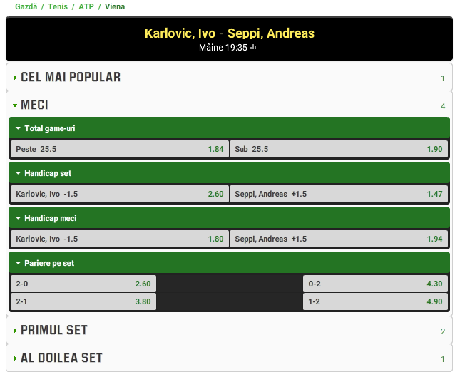 Ivo Karlovic vs Andreas Seppi