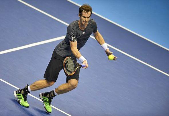 David Ferrer vs Andy Murray