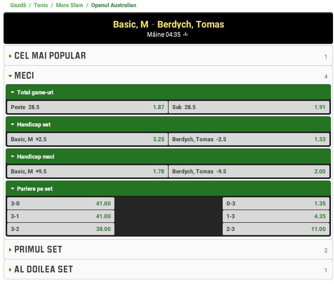 Mirza Basic vs Tomas Berdych