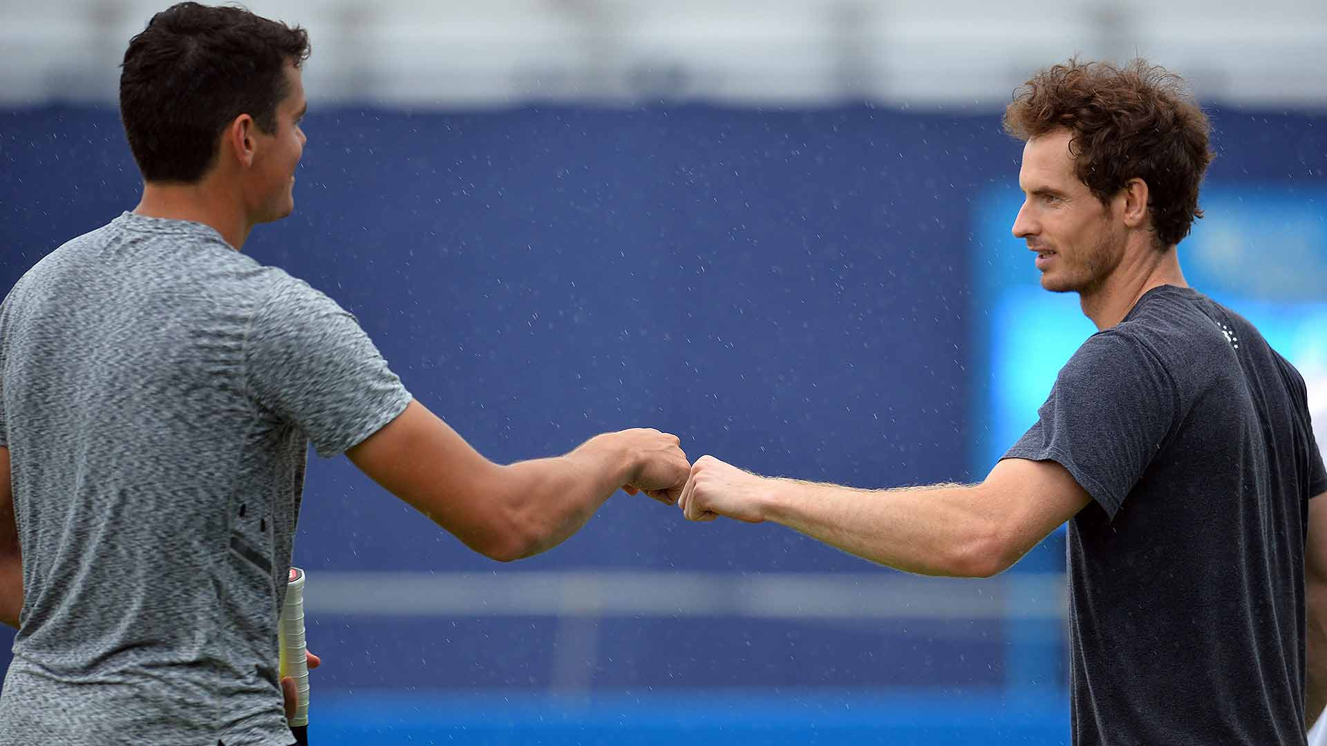 Rezultate live Wimbledon ziua 13